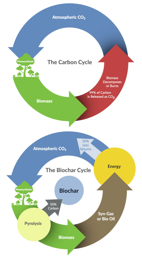 Biochar - carbon cycle